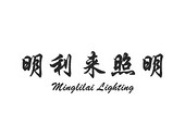 中山市东凤镇明利来照明电器厂