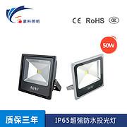 IP65超强防水投光灯 50W