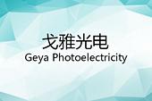 中山市戈雅光电科技有限公司