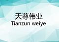 深圳市天尊伟业光电科技有限公司