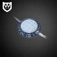 盾王LED模组光源,透明