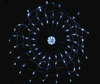 金猴彩色灯网