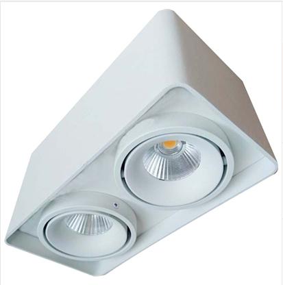 雷尼司��F代LED白色黑色SLC78005/2*10W筒�羯��