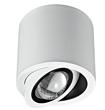 雷尼司现代白色 固定式射灯-7378