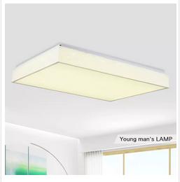 潮灯馆 LED客厅吸顶灯长方形卧室大厅房间餐厅大气现代简约灯具