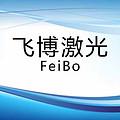 上海飞博激光科技有限公司