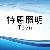 广东顺德特恩照明电器有限公司