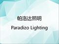 中山市帕洛达照明有限公司