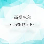 深圳市高视威尔物联视讯科技有限公司
