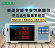 DCUU/普美PM9915B智能电参数测试仪