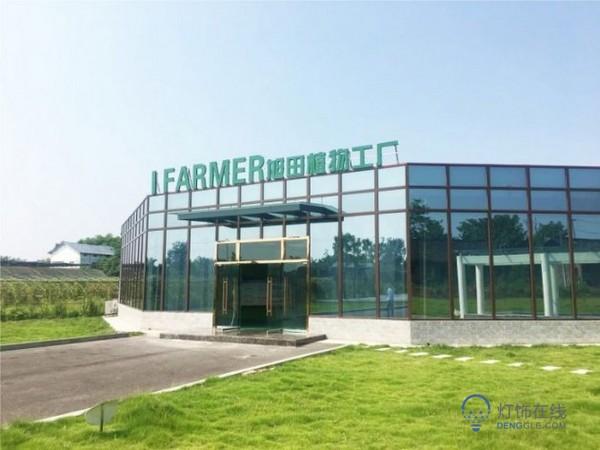 6600平方米植物工厂在渝建成投产,总投资约800万