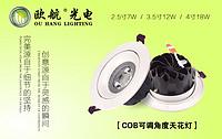 6099款 COB大透镜天花灯