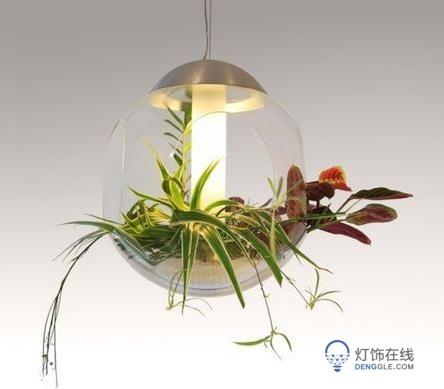 LED吊灯,挂的是植物还是LED吊灯 绿色植物为家居供电