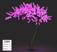 GFZ-2112迎宾树