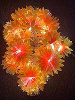 光纤花灯串~菊花