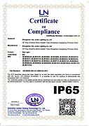壁灯IP65证书