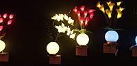 LED蝴蝶兰花瓶