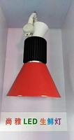 LED 生鲜灯3