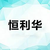 深圳市恒利华电子有限公司