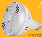 PAR30极致灯杯