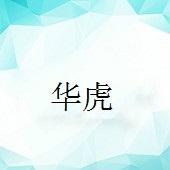 广东华虎新能源科技有限公司