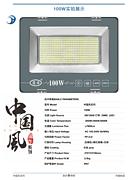 100W中国风投光灯