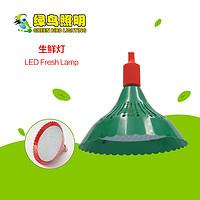 绿色灯罩超亮LED生鲜灯