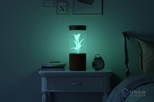 白天看花晚上照明的神灯 让人想到阿凡达