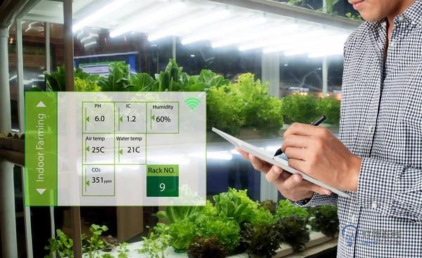 """植物照明进入""""全光谱""""时代,细分市场潜力几何?"""